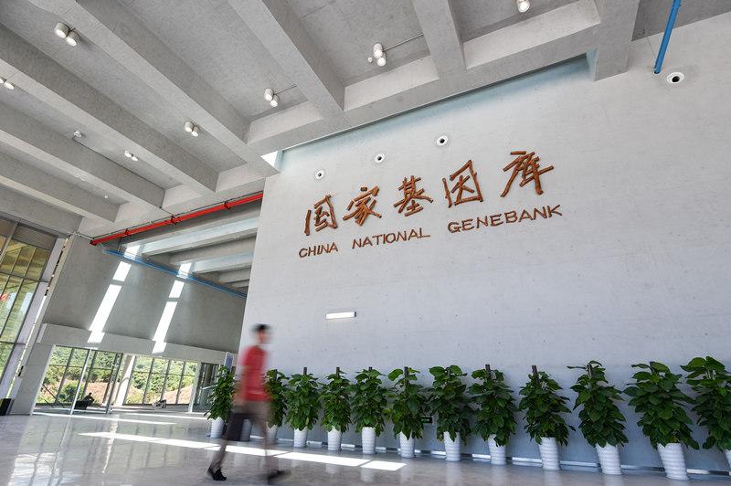 这是6月23日拍摄的国家基因库内景。 新华社记者 毛思倩 摄