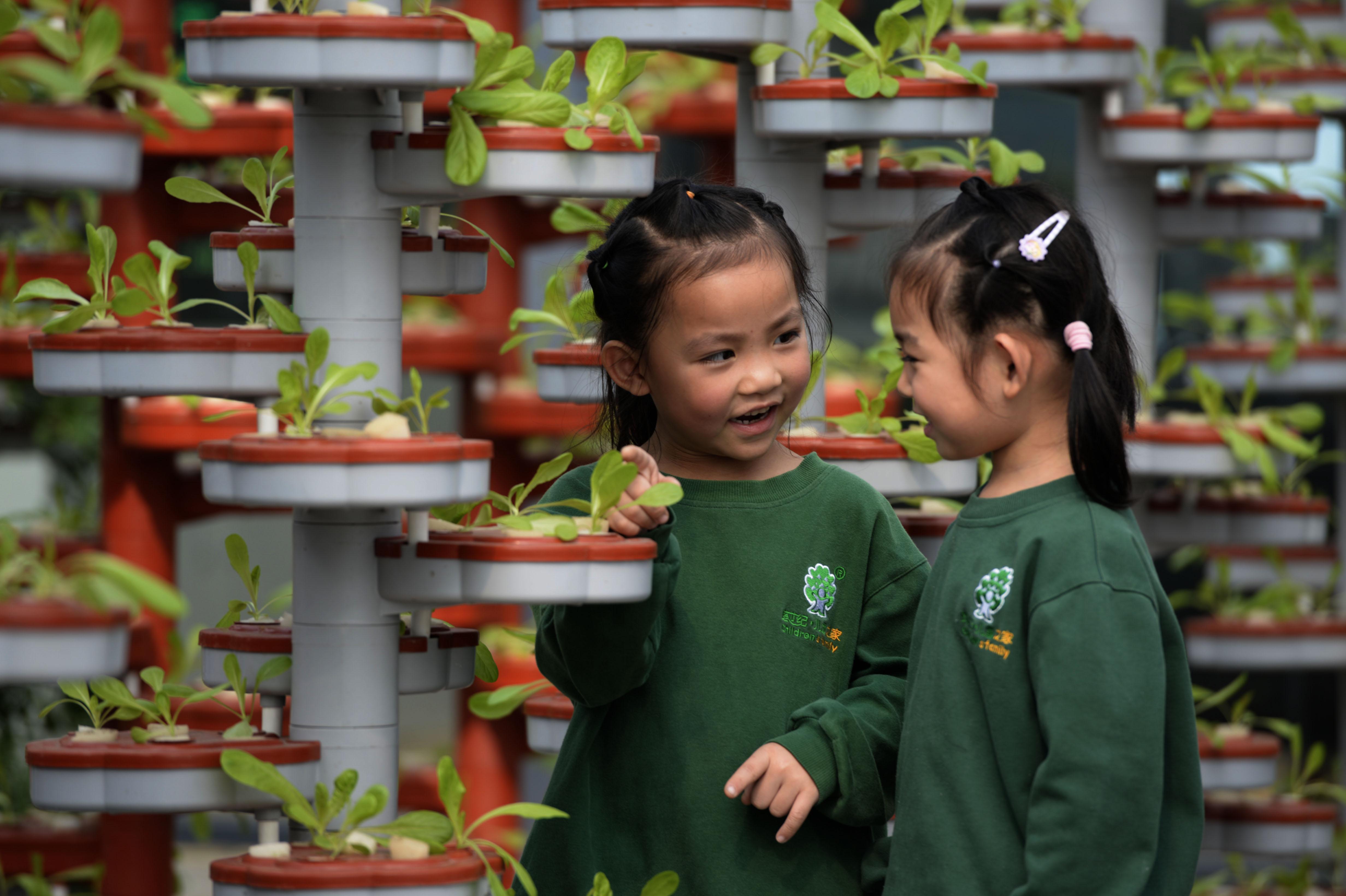 ↑10月19日,两名小朋友在观察无土栽培。CICPHOTO/霍红军 摄