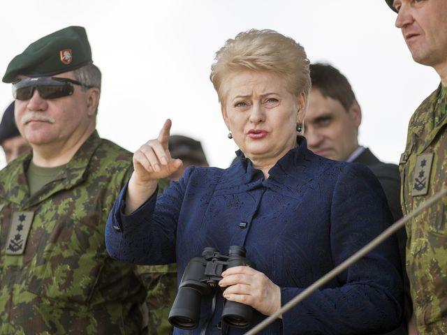 资料:6月16日,立陶宛总统格里包斯凯特(中)视察北约联合军演。(图片来源:新华/美联)