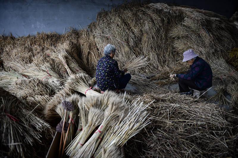 10月28日,在沭阳县颜集镇堰下村,当地农民在捆扎麦穗准备做干花在网上售卖。新华社记者 李响 摄