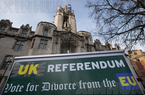 """2016年12月7日,在英国伦敦最高法院外,一名支持""""脱欧""""者高举标语。(新华/法新)"""