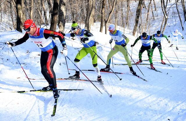 瓦萨越野滑雪赛赛况,在林海雪原中竞逐。新华社记者林宏摄