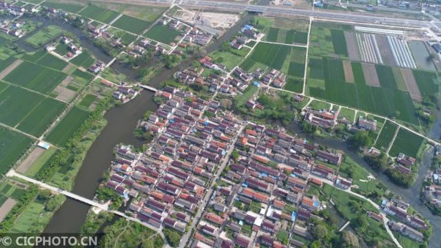 4月25日在江苏省南通市海安县拍摄的青墩遗址一角.