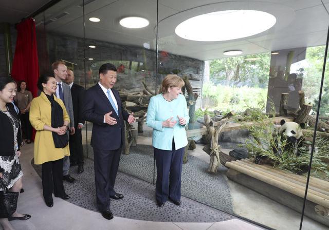 习近平主席访德并出席G20峰会纪实