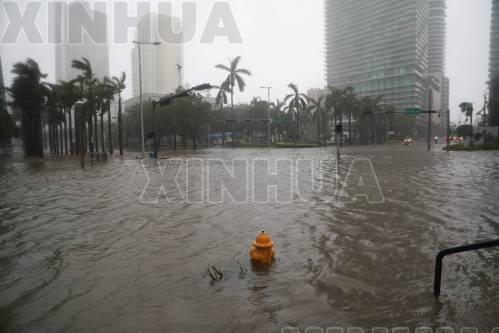 这是9月10日在美国佛罗里达州迈阿密拍摄的积水的街道。 (新华社/路透)