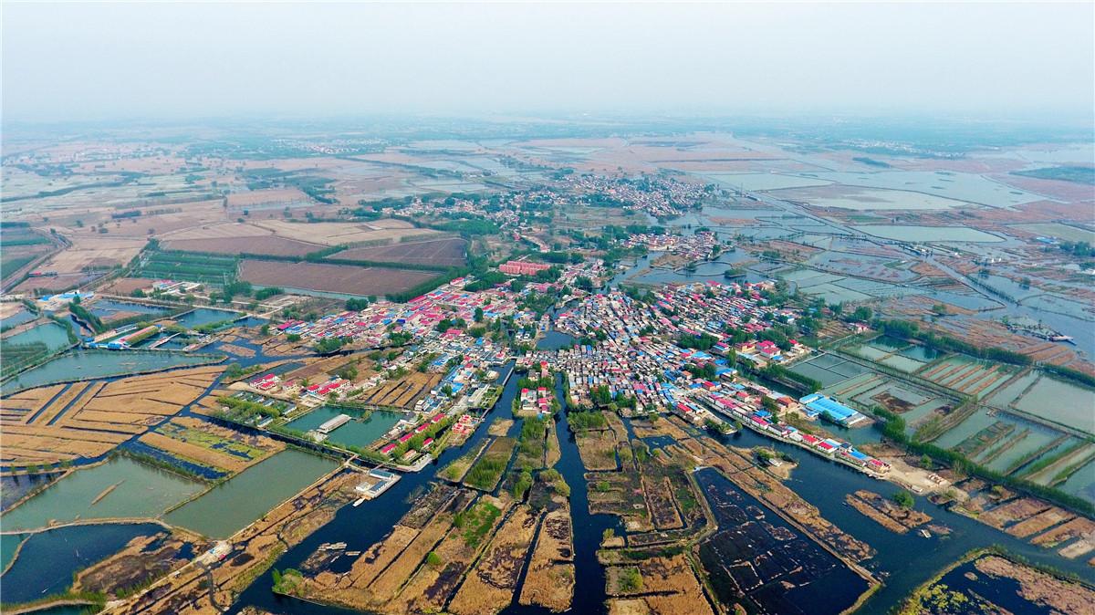 这是河北雄安新区白洋淀内的村庄