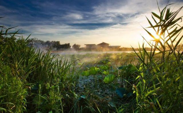 """患水·治水·亲水——里下河的千年""""人水传奇"""""""