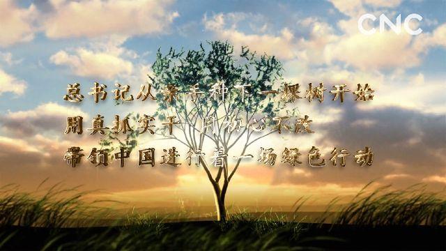 金句来习 众人植树树成林