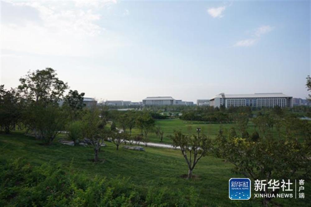 ↑北京城市副中心行政办公区(7月25日摄)。新华社记者鞠焕宗摄