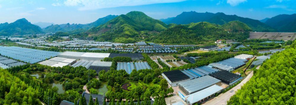 """寿仙谷:以高质量标准定义""""道地药材"""" 助力产业振兴"""