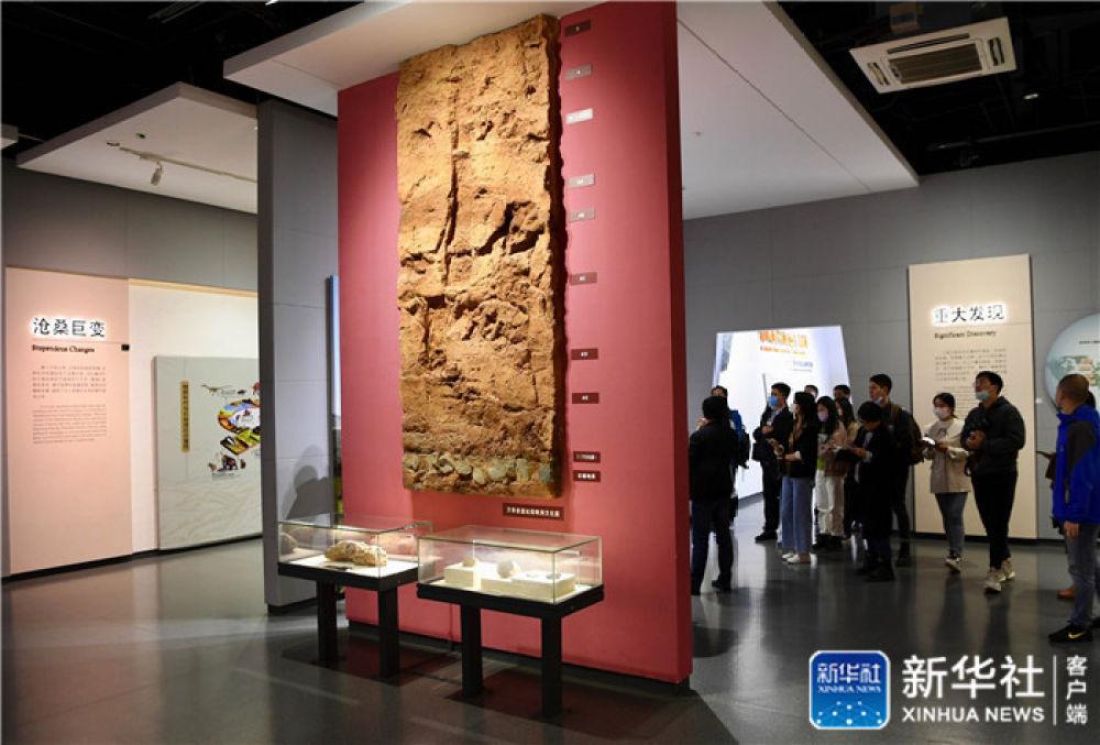 聆听18万年前的远古回声——福建万寿岩遗址保护纪实