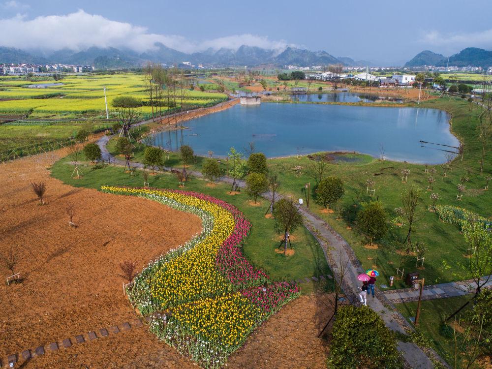 《【恒达平台怎么注册】生态文明之光照耀美丽中国——写在绿水青山就是金山银山理念提出15周年之际》