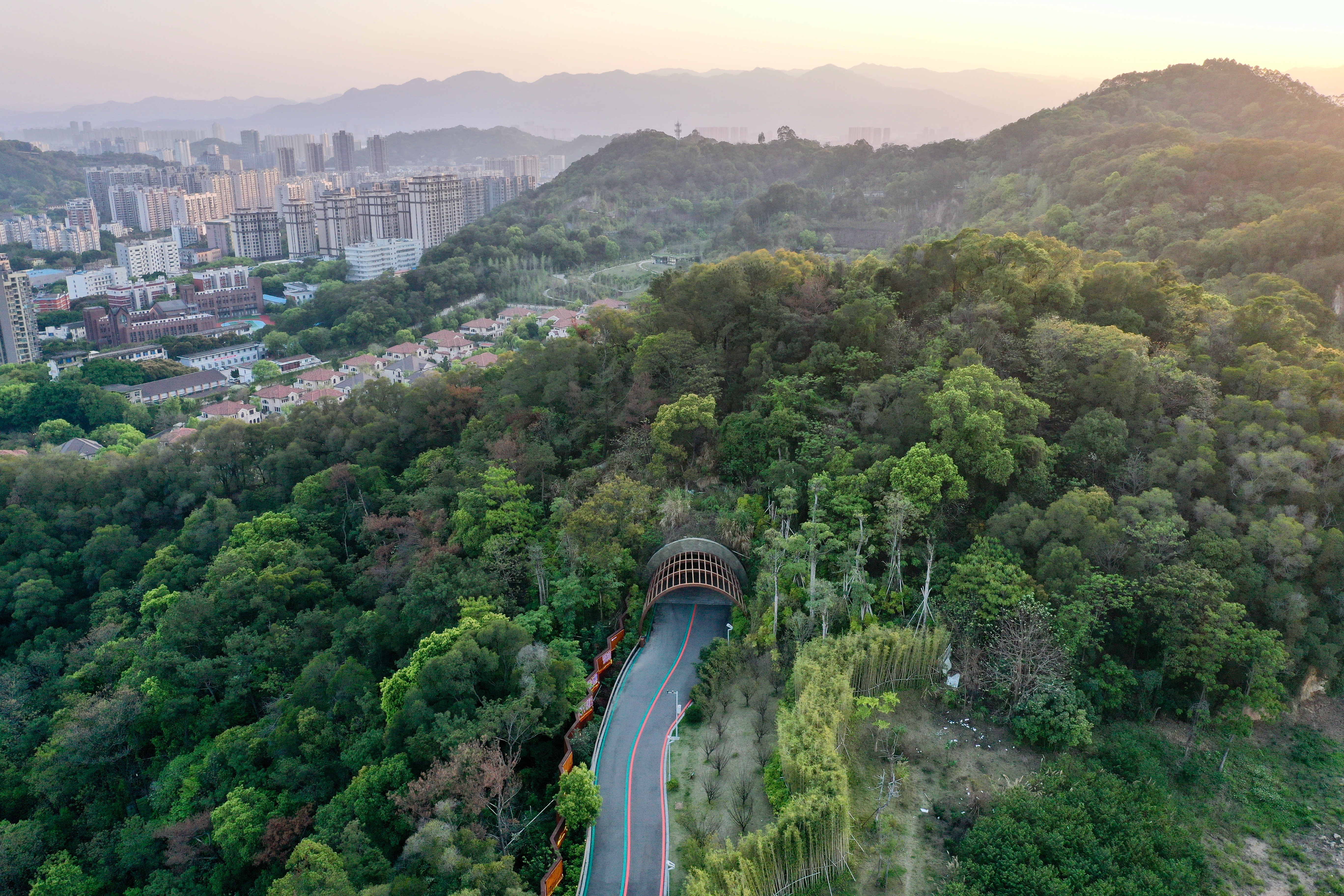 福州:逛福山郊野公园 赏森林城市美景